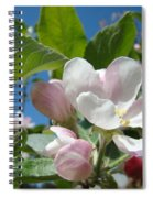 Spring Apple Blossoms Pink White Apple Trees Baslee Troutman Spiral Notebook