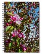 Spring Apple Blossoms- Spring Flowers Spiral Notebook