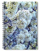 Spring Around Spiral Notebook