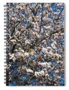 Spring As Rhapsody Spiral Notebook