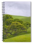 Spring At Del Valle Spiral Notebook