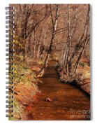 Spring At Red Rock Crossing Spiral Notebook