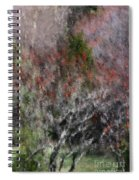 Spring At The Hacienda Spiral Notebook