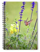 Spring Beauties In The Garden Spiral Notebook