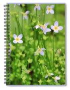 Spring Beauties Spiral Notebook