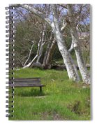 Spring Bench In Sycamore Grove Park Spiral Notebook