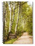 Spring Birches Woods Footpath Spiral Notebook