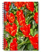 Spring Bliss Spiral Notebook