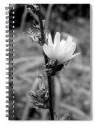 Monochrome Flower Series - Spring Bloom Spiral Notebook