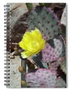Spring Bloom Spiral Notebook
