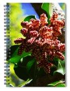 Spring Blossom 1 Spiral Notebook