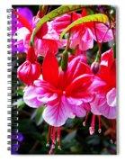 Spring Blossom 6 Spiral Notebook