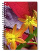 Spring Blossoms 2 Spiral Notebook