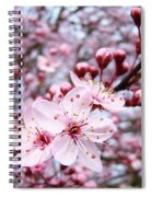 Spring Blossoms Art  Pink Tree Blossom Baslee Troutman Spiral Notebook