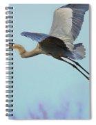 Spring Blue 2009 Spiral Notebook