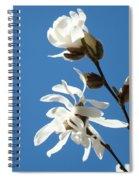 Spring Blue Sky Floral Art Print White Magnolia Tree Baslee Troutman Spiral Notebook