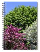 Spring Color 2 051818 Spiral Notebook
