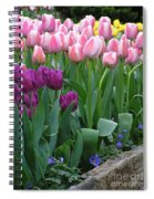 Spring Colors Spiral Notebook