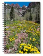 Spring Dandelion And Mountain Landscape Spiral Notebook