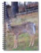 Spring Doe Spiral Notebook
