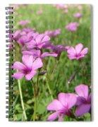 Spring Dream Spiral Notebook