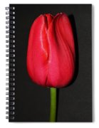 Spring Drop  Spiral Notebook