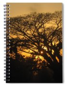 Spring Evening  Spiral Notebook