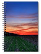Spring Field Spiral Notebook
