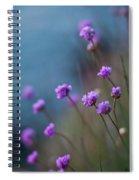 Spring Fields Spiral Notebook