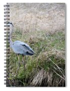 Spring Fishing Spiral Notebook
