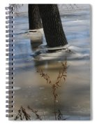 Spring Flood Spiral Notebook