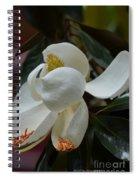 Spring Floral Spiral Notebook