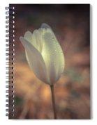 Spring Flower 4 Spiral Notebook