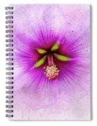Spring Flower Frill Spiral Notebook