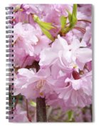 Spring Flowering Trees Art Prints Pink Flower Blossoms Baslee Spiral Notebook