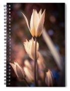 Spring Flowers 2 Spiral Notebook