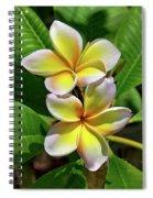 Spring Flowers 8 Spiral Notebook
