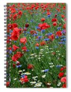 Spring Flowers Spiral Notebook