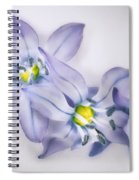 Spring Flowers On White Spiral Notebook
