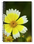 Spring Flowers Shell Road Spiral Notebook