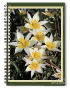 Spring Flowers With Green Border Spiral Notebook
