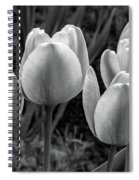 Spring Garden - Act One 2 Bw Spiral Notebook