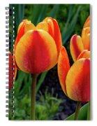 Spring Garden - Act One 2 Spiral Notebook