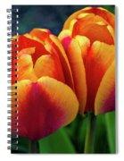 Spring Garden - Act One Spiral Notebook