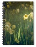 Spring Garden With Narcissus Flowers Spiral Notebook