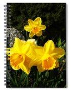 Spring Gold Spiral Notebook