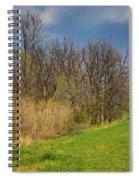 Spring Grass Spiral Notebook