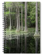 Spring Green In Cypress Swamp Spiral Notebook