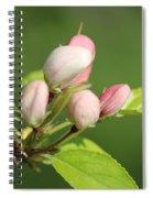 Spring Highlights Spiral Notebook