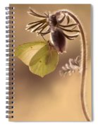Spring Impression With Pasque Flower Spiral Notebook